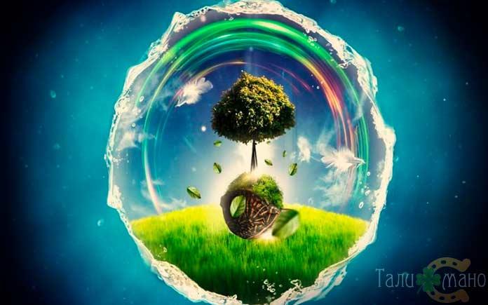 Древо жизни центр мира